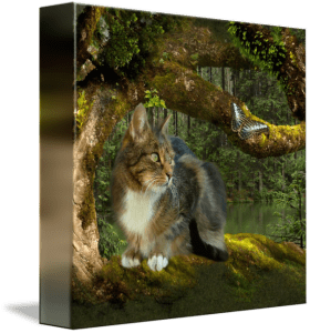 Cat in the Enchanted Forest Art