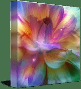 Magical Dream Flower Art