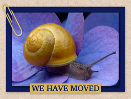 Snail New Home Moving or New Address Postcard