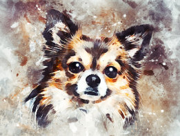 Cute Chihuahua Dog Painting Postcard