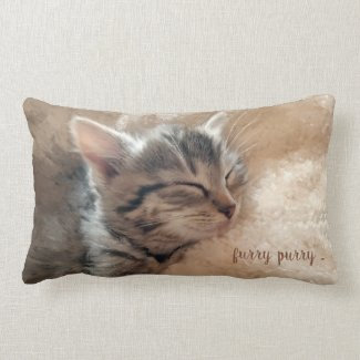 Dreaming tabby kitten animal lovers pillow