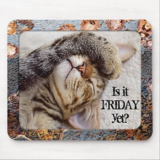 Your photo funny cat friday feeling mousepad