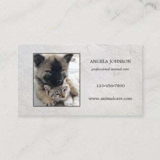Simple photo animal care business card