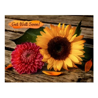 Rustic cheerful sunflower dahlia get well soon postcard
