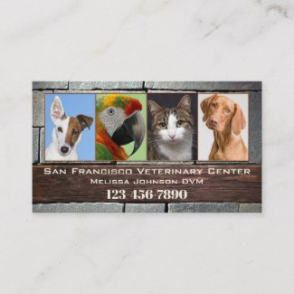 Veterinarian or Animal Clinic appointment business card