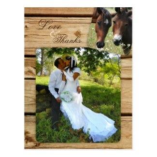 Country Horses Wedding Photo Thank You Postcard