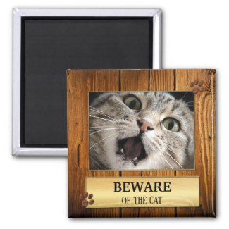 Funny beware of the cat personalized photo magnet