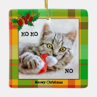 Personalized Funny Cat Christmas Plaid Ornament